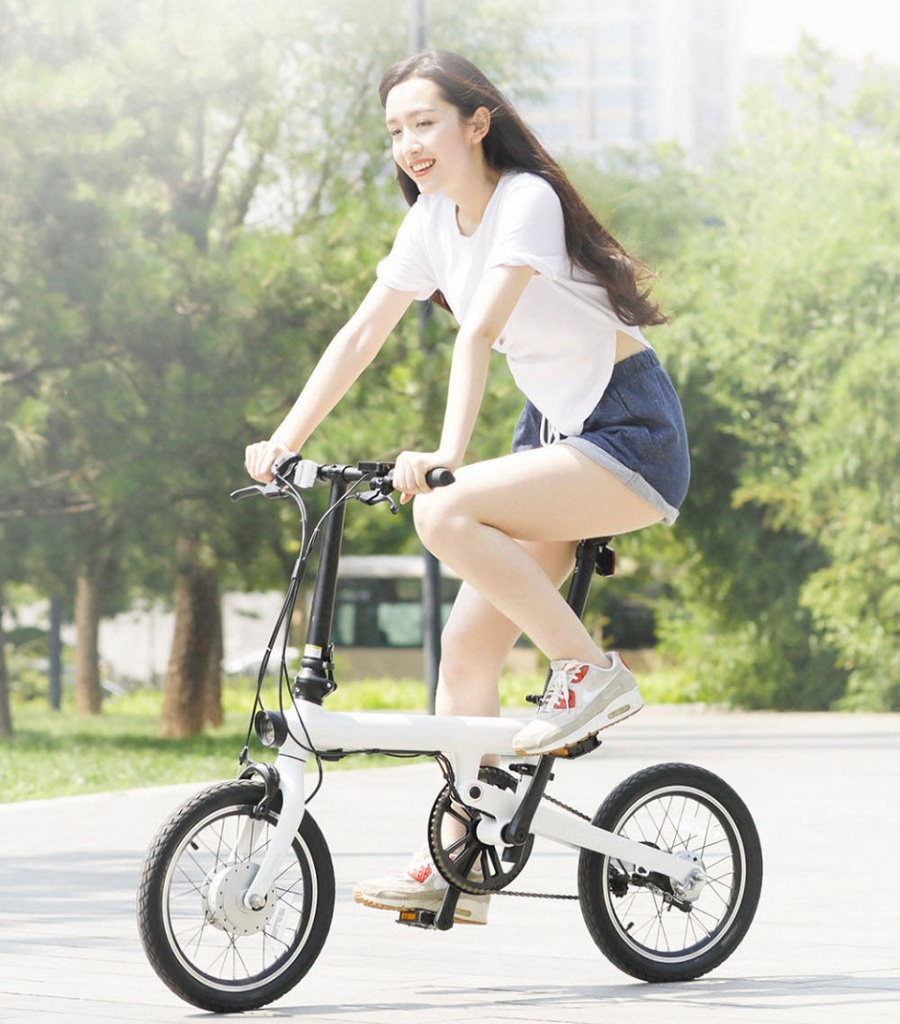 Mi QiCycle Electric Bicycle